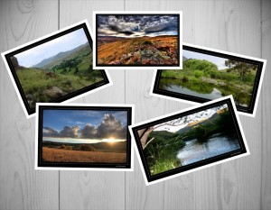 Nature photography. Images captured through the lens of Edwin Isted.